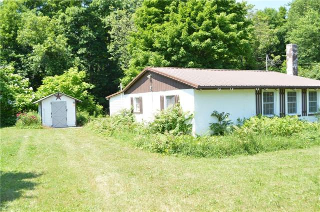1532 River Road, Galen, NY 14433 (MLS #R1127329) :: The Chip Hodgkins Team