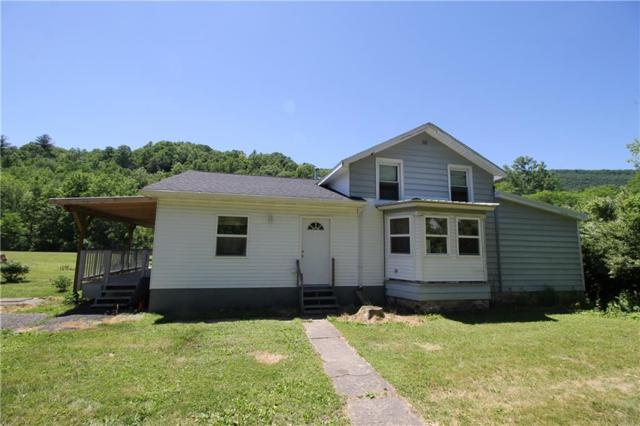 1351 State Route 414, Montour, NY 14865 (MLS #R1128011) :: The CJ Lore Team | RE/MAX Hometown Choice