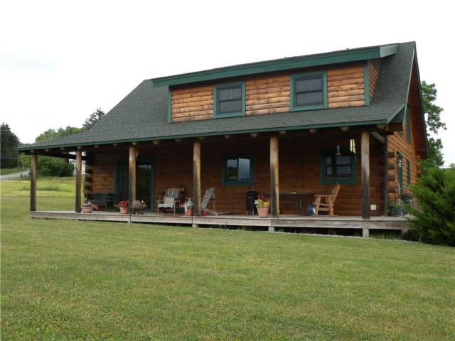 9005 Jersey Hill Road, Canadice, NY 14471 (MLS #R1128760) :: The Rich McCarron Team
