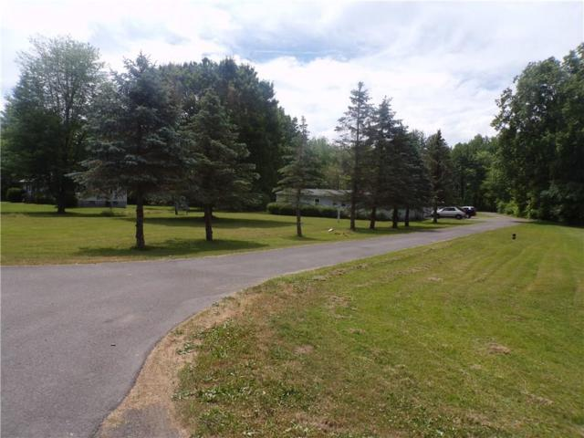 400 E Dunham Road N, Waterloo, NY 13165 (MLS #R1128793) :: Updegraff Group