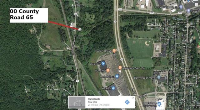0 County Route 65, Hornellsville, NY 14843 (MLS #R1129325) :: Robert PiazzaPalotto Sold Team