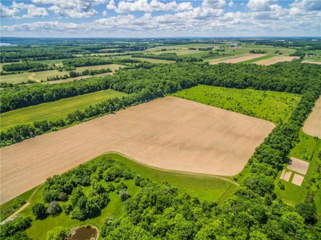 00 State Route 89, Fayette, NY 13148 (MLS #R1129494) :: The Rich McCarron Team