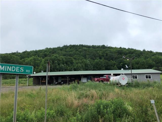 1802 State Route 36, Troupsburg, NY 14885 (MLS #R1129546) :: The Rich McCarron Team