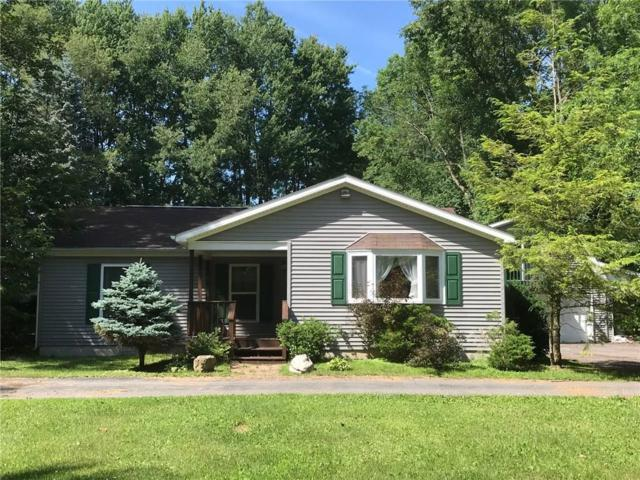 1664 Carley Drive, Conquest, NY 13140 (MLS #R1130906) :: The Rich McCarron Team