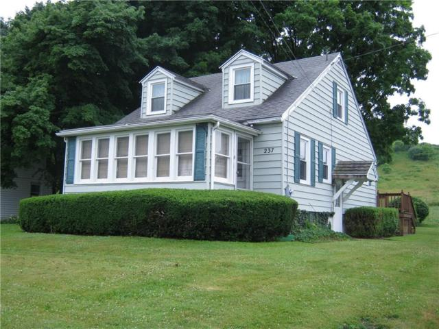 237 State Route 88 S, Arcadia, NY 14513 (MLS #R1131395) :: The Rich McCarron Team