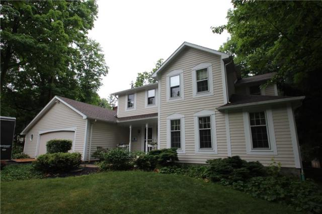 20 Timber Trail, Sweden, NY 14420 (MLS #R1131625) :: Robert PiazzaPalotto Sold Team