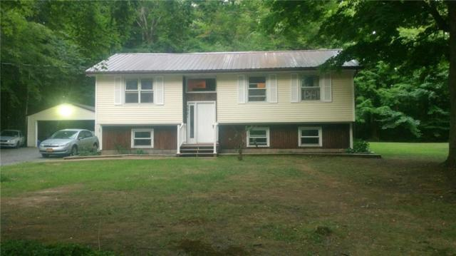 5001 Upper Holley Road, Clarendon, NY 14470 (MLS #R1132851) :: The Chip Hodgkins Team