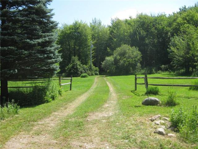 4240 Sulphur Springs Aka Stetson W, Ripley, NY 14775 (MLS #R1133057) :: BridgeView Real Estate Services