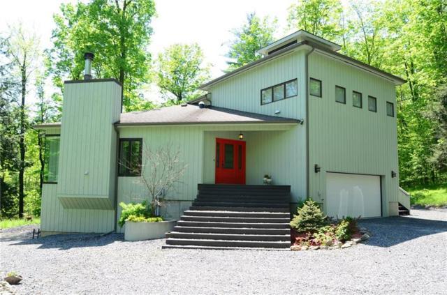 32 Eagleshead Road, Dryden, NY 14850 (MLS #R1133301) :: The CJ Lore Team | RE/MAX Hometown Choice