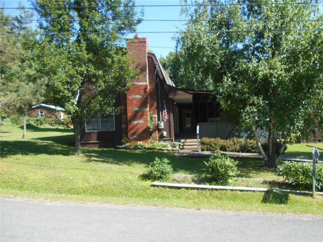 9819 Sunset Trail, Wayne, NY 14840 (MLS #R1133333) :: The Rich McCarron Team