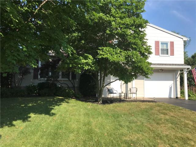 83 Sperry Drive, Henrietta, NY 14467 (MLS #R1133935) :: The Chip Hodgkins Team