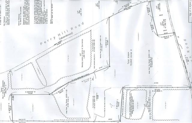 0 Beach Hill Rd Road, Tyrone, NY 14887 (MLS #R1134198) :: Updegraff Group