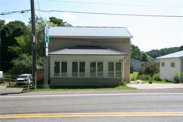 2778 Route 426, Mina, NY 14736 (MLS #R1134546) :: The Rich McCarron Team