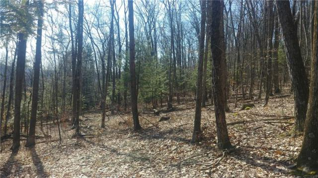 6961/6963 Freeman Hollow Road, Bath, NY 14810 (MLS #R1134783) :: BridgeView Real Estate Services