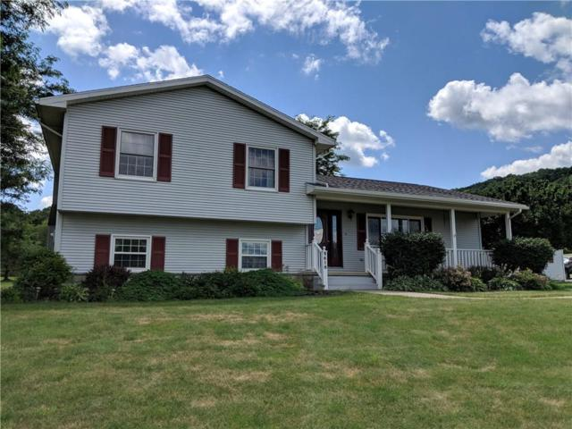 9618 Nouvoo Road, Genesee, NY 14770 (MLS #R1134804) :: Updegraff Group