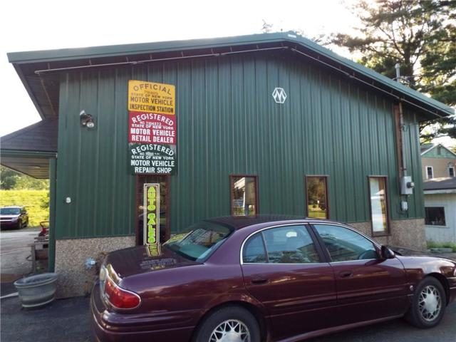 1093 Olean Portville Road, Portville, NY 14760 (MLS #R1134875) :: Robert PiazzaPalotto Sold Team