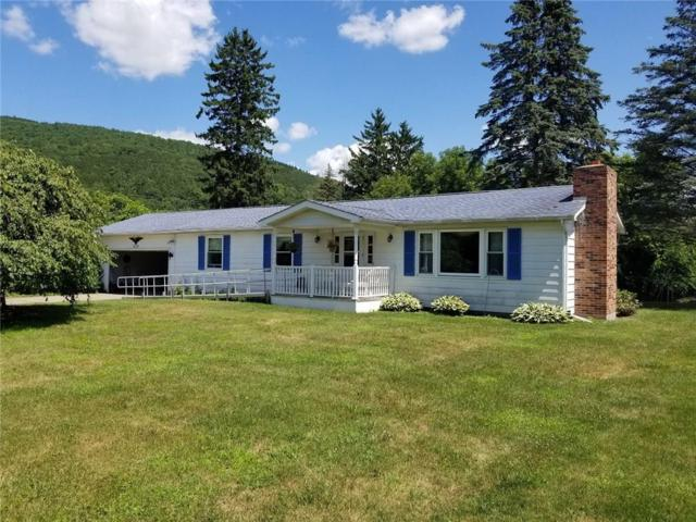 5528 Ordway Lane, Canisteo, NY 14823 (MLS #R1135063) :: The Chip Hodgkins Team