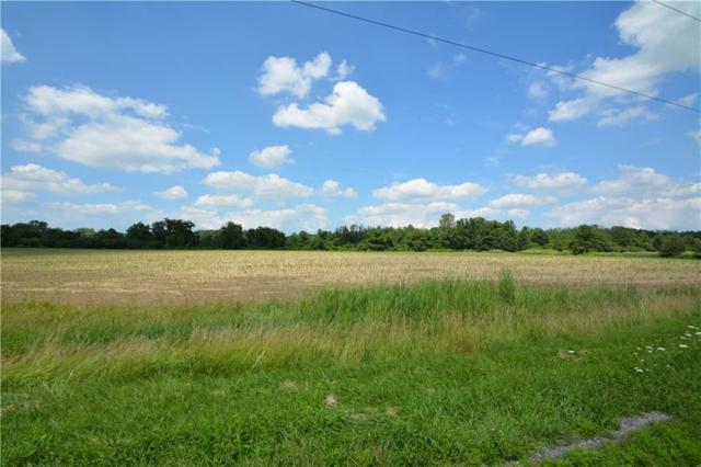 0 S Lake Road, Bergen, NY 14416 (MLS #R1135295) :: BridgeView Real Estate Services