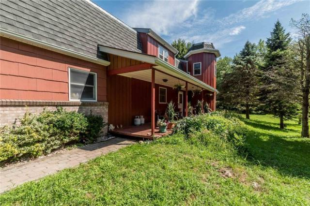 4163 Hindsburg Road, Clarendon, NY 14470 (MLS #R1136616) :: Robert PiazzaPalotto Sold Team