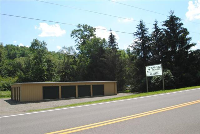 959 Mchenry Valley Road, Almond, NY 14804 (MLS #R1136696) :: Robert PiazzaPalotto Sold Team