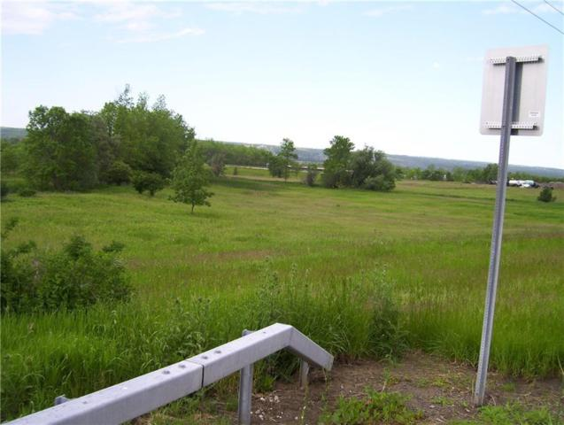 0 Groveland Station (Rt 63) Road, Groveland, NY 14462 (MLS #R1137577) :: BridgeView Real Estate Services