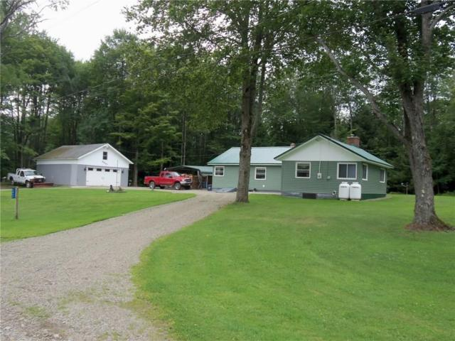 6827 Rocky Glen Road, Stockton, NY 14718 (MLS #R1138483) :: The Rich McCarron Team