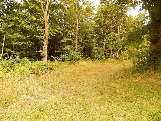 0000 Webster Road Road, Portland, NY 14716 (MLS #R1138772) :: The CJ Lore Team | RE/MAX Hometown Choice