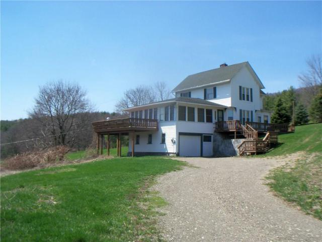 6690 State Route 21, South Bristol, NY 14512 (MLS #R1138936) :: The Rich McCarron Team