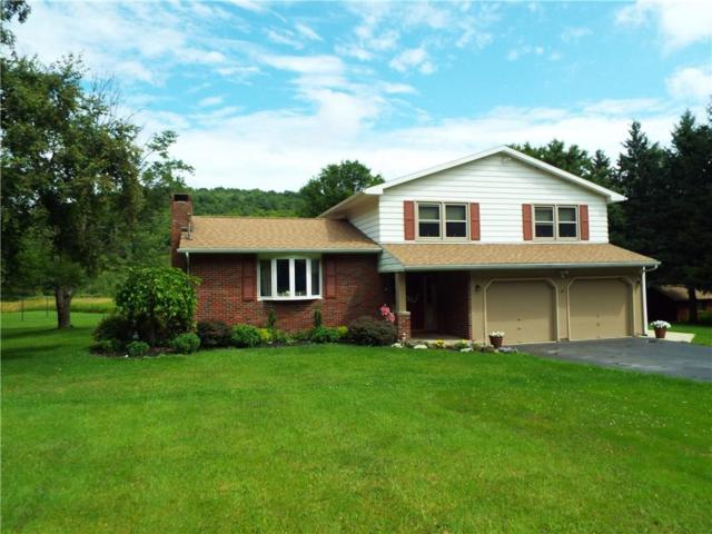 1056 Sherry Hollow Road, Genesee, NY 14770 (MLS #R1139018) :: The Chip Hodgkins Team