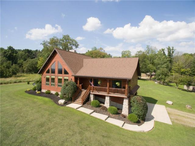 596 Page Road, Carroll, NY 14738 (MLS #R1139100) :: The Chip Hodgkins Team