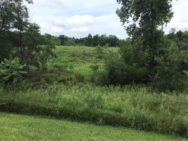 0 Route 436, Ossian, NY 14437 (MLS #R1139780) :: Updegraff Group