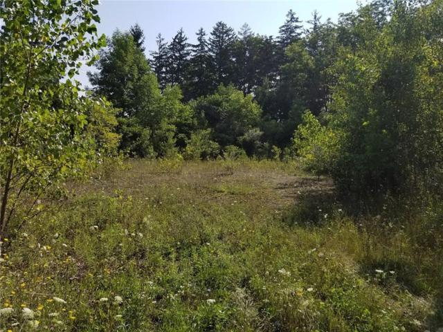 0 Gibson Street, North Dansville, NY 14437 (MLS #R1140574) :: The CJ Lore Team | RE/MAX Hometown Choice