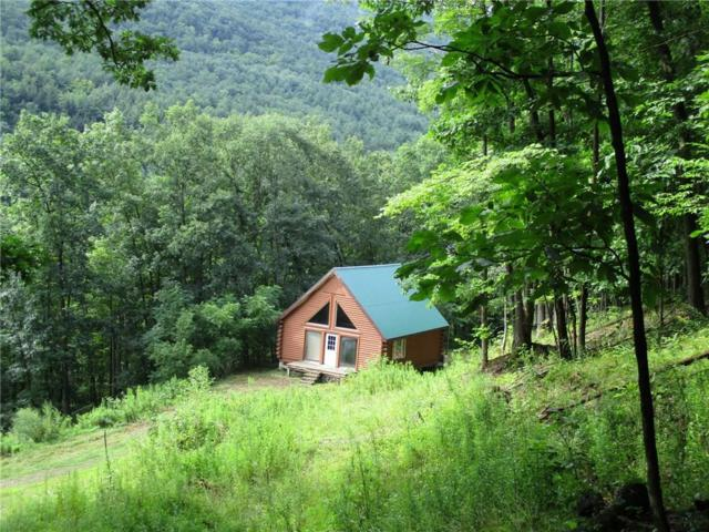 0 Purdy Creek Road, Hartsville, NY 14823 (MLS #R1142732) :: Updegraff Group