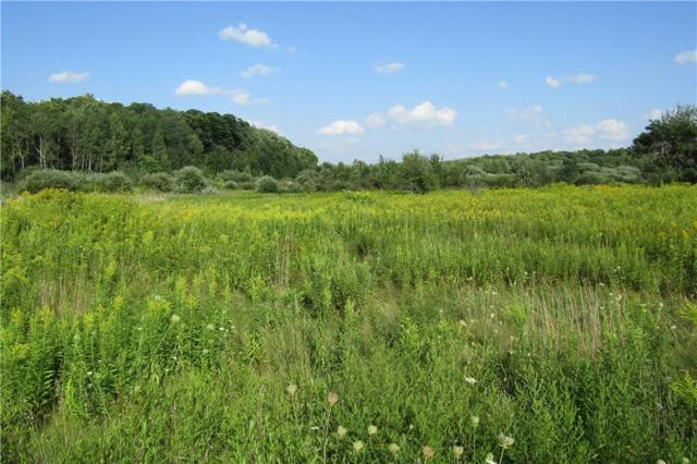 Bayview Rd Bayview Road E, Ellery, NY 14712 (MLS #R1143859) :: BridgeView Real Estate Services