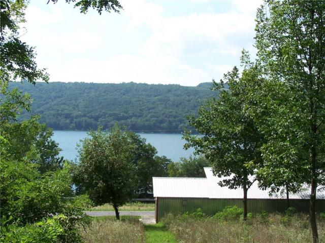 0 Nys Route 54, Barrington, NY 14837 (MLS #R1144643) :: Updegraff Group