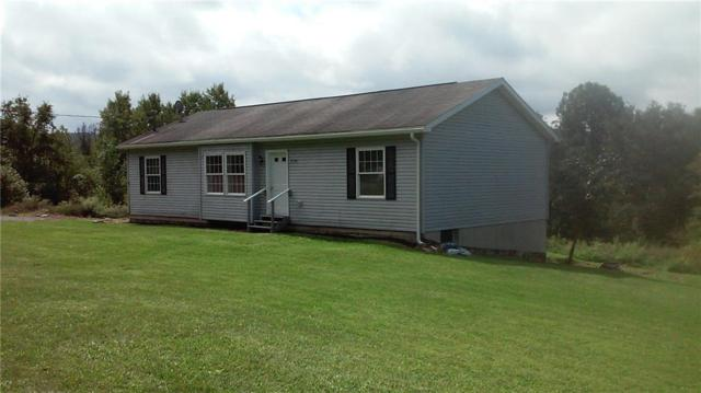 7758 County Route 77 Highway, Prattsburgh, NY 14873 (MLS #R1145390) :: Robert PiazzaPalotto Sold Team