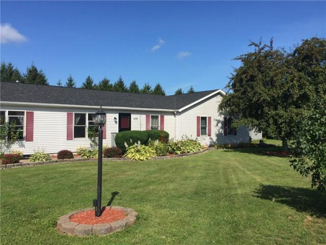 6091 E Townline Road, Williamson, NY 14589 (MLS #R1145641) :: BridgeView Real Estate Services