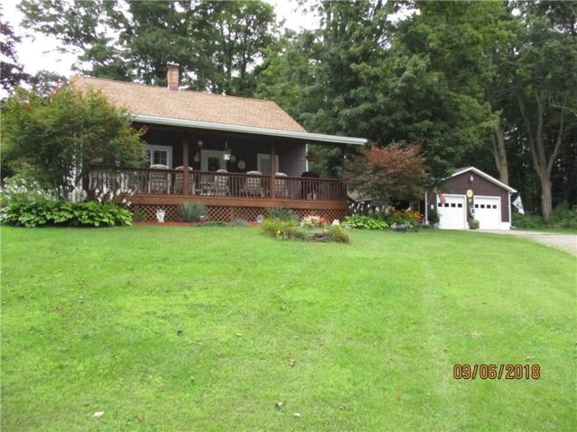 7268 Fitzgerald Road, Hornellsville, NY 14843 (MLS #R1146071) :: Robert PiazzaPalotto Sold Team