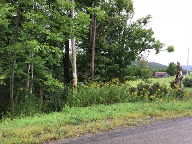 0 Fisher Road S, Prattsburgh, NY 14873 (MLS #R1147363) :: Robert PiazzaPalotto Sold Team