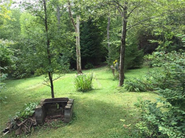 7611 John Dixon Road, Almond, NY 14804 (MLS #R1147966) :: Robert PiazzaPalotto Sold Team