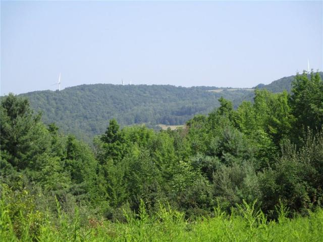 0 County Rd 14, Canisteo, NY 14823 (MLS #R1148035) :: The Chip Hodgkins Team