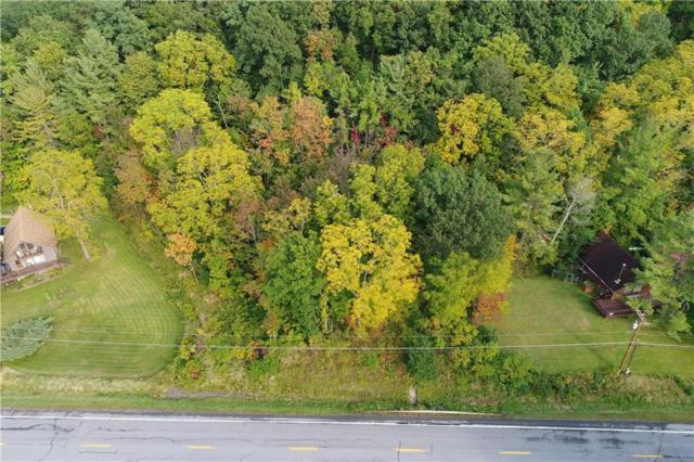 0 State Route 64, Bristol, NY 14424 (MLS #R1148073) :: The Rich McCarron Team