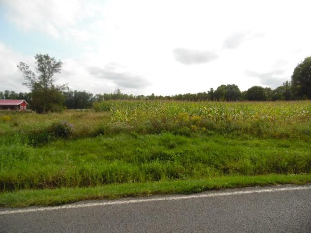 0 Noble Road, Seneca Falls, NY 13148 (MLS #R1149339) :: Updegraff Group