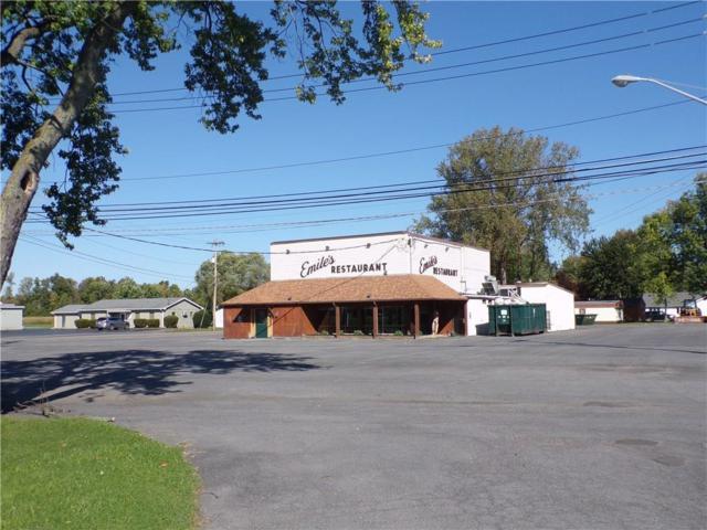 369 Waterloo Geneva Road, Waterloo, NY 13165 (MLS #R1149438) :: The CJ Lore Team | RE/MAX Hometown Choice
