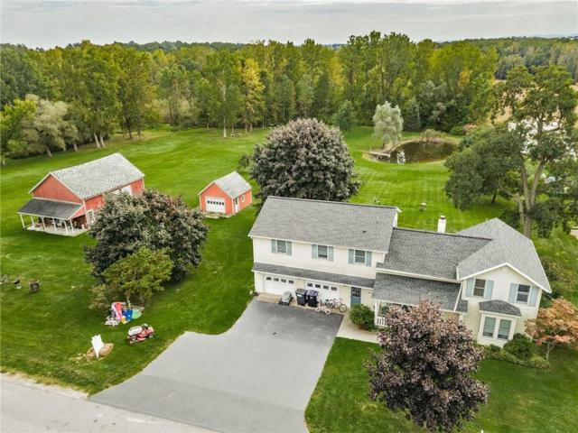 930 Kuttruff Road, Walworth, NY 14568 (MLS #R1149675) :: The CJ Lore Team | RE/MAX Hometown Choice