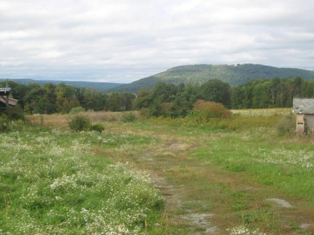 0 County Route 95, Wayne, NY 14840 (MLS #R1151134) :: Updegraff Group