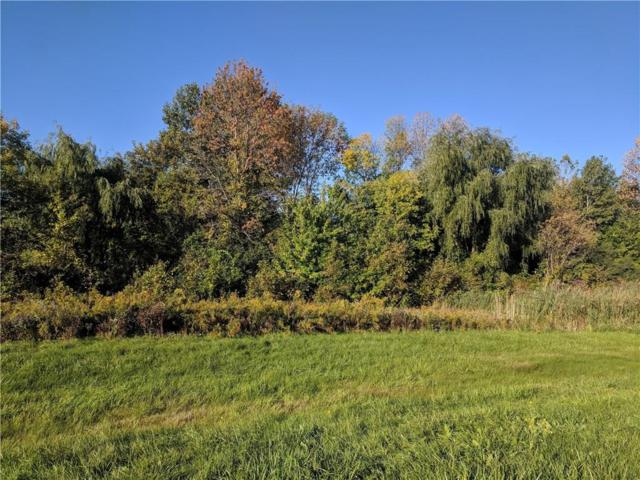 1860 State Route 332, Canandaigua-Town, NY 14424 (MLS #R1151825) :: Robert PiazzaPalotto Sold Team