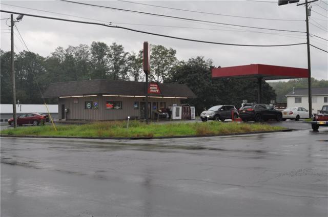803 County Road 4, Geneva-Town, NY 14456 (MLS #R1151843) :: Updegraff Group