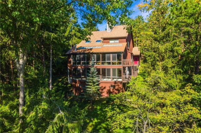 15 Spyglass Hill, South Bristol, NY 14424 (MLS #R1153121) :: Robert PiazzaPalotto Sold Team