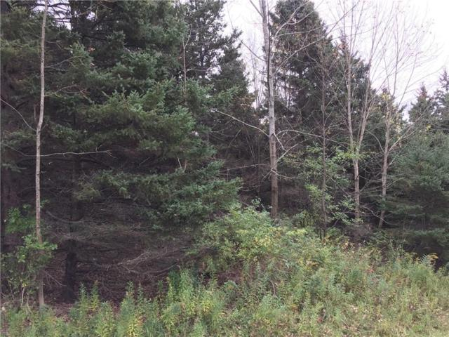 0 Barber Lane, Alfred, NY 14803 (MLS #R1153908) :: The CJ Lore Team   RE/MAX Hometown Choice